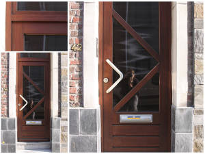 Houten-voordeur-afzelia